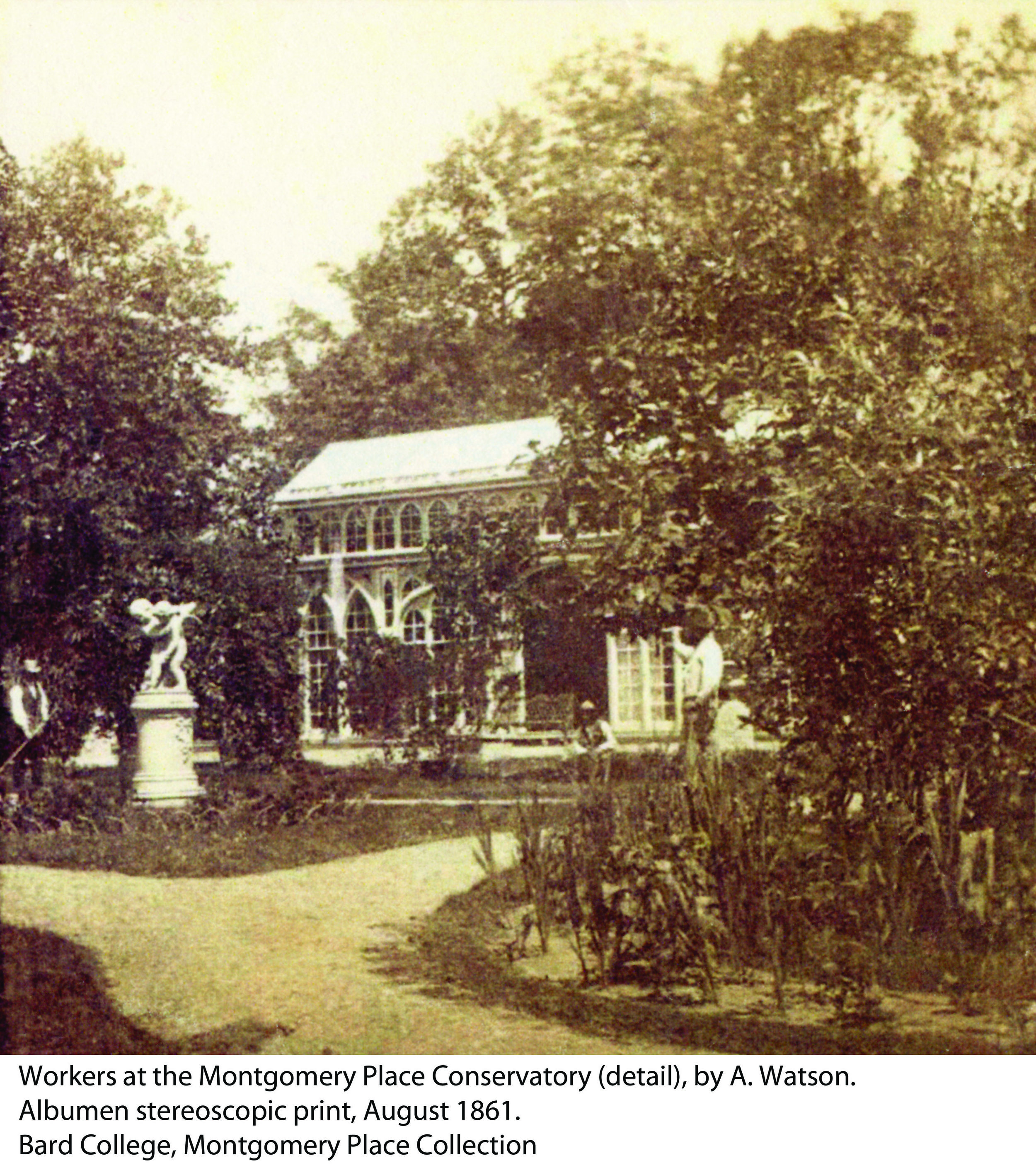 Montgomery Place Conservatory 1861.jpg