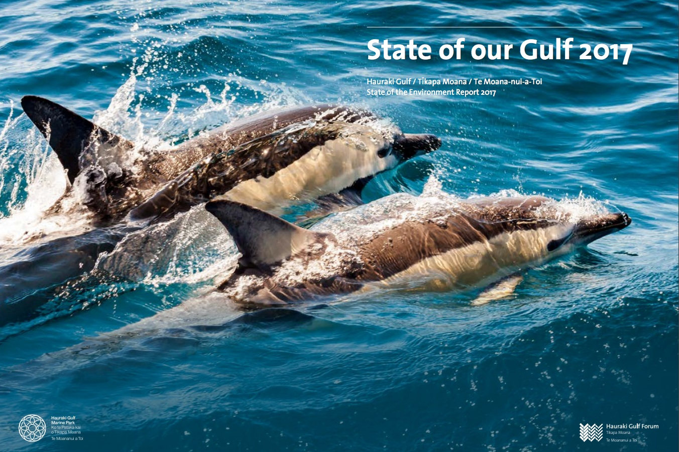 The State of our Gulf 2017 Report, published by Hauraki Gulf Forum (December 2017)