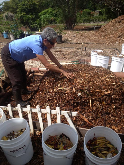 Mindy Jaffe showing how large volume of organic food waste can be recycled with shredded wood chips.