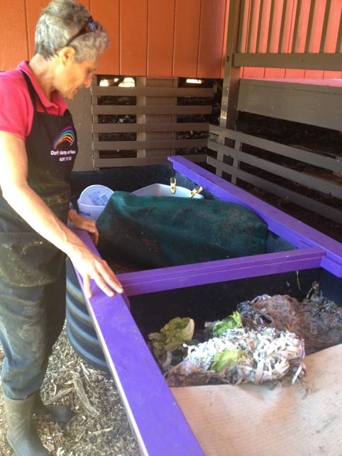 Vermicomposting method . Mindy showing her worm bins.