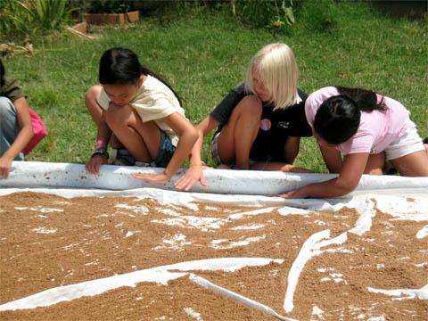 Students carefully drying out their EM� Bokashi