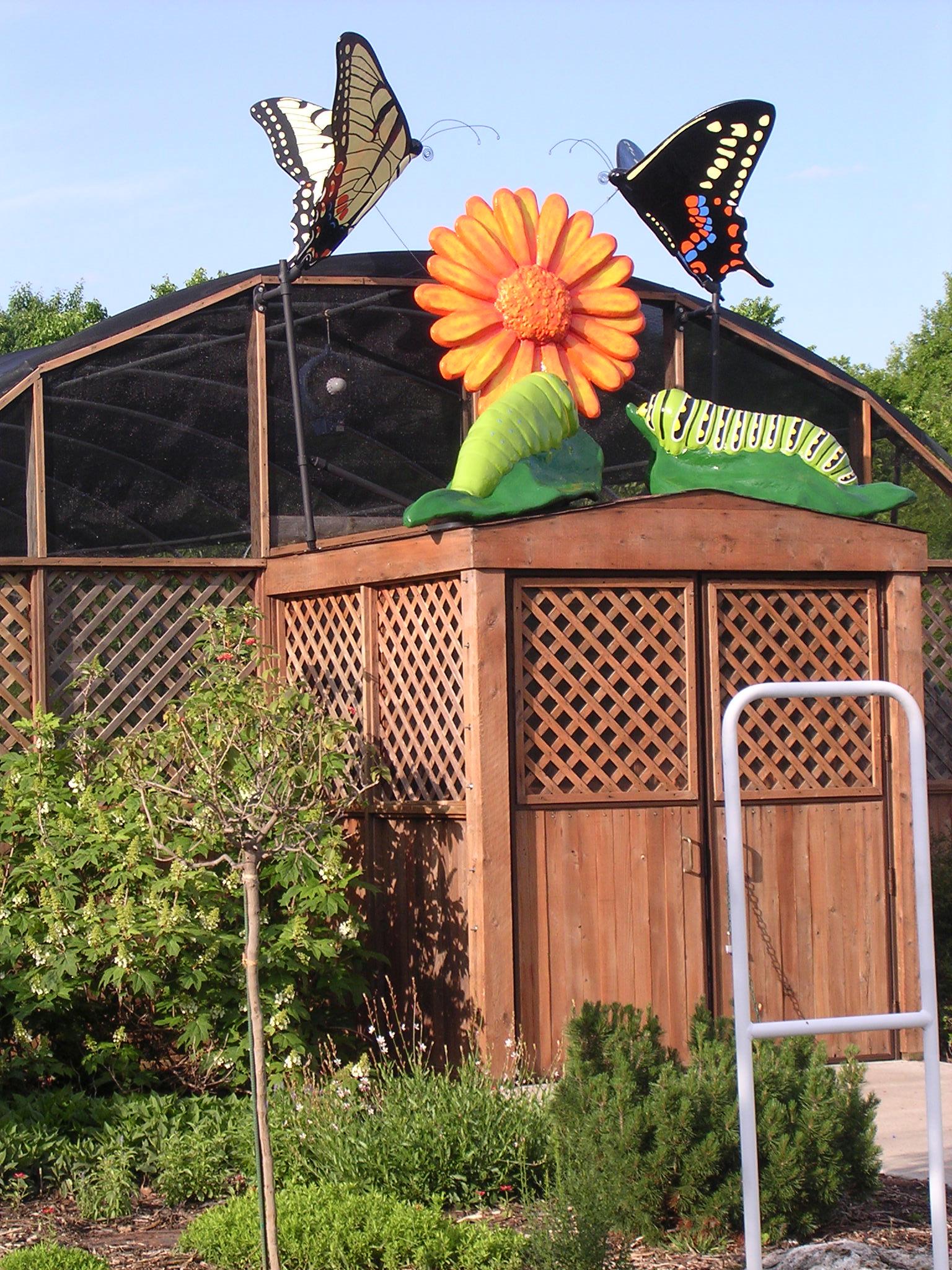 Butterflies rooftop 006.jpg