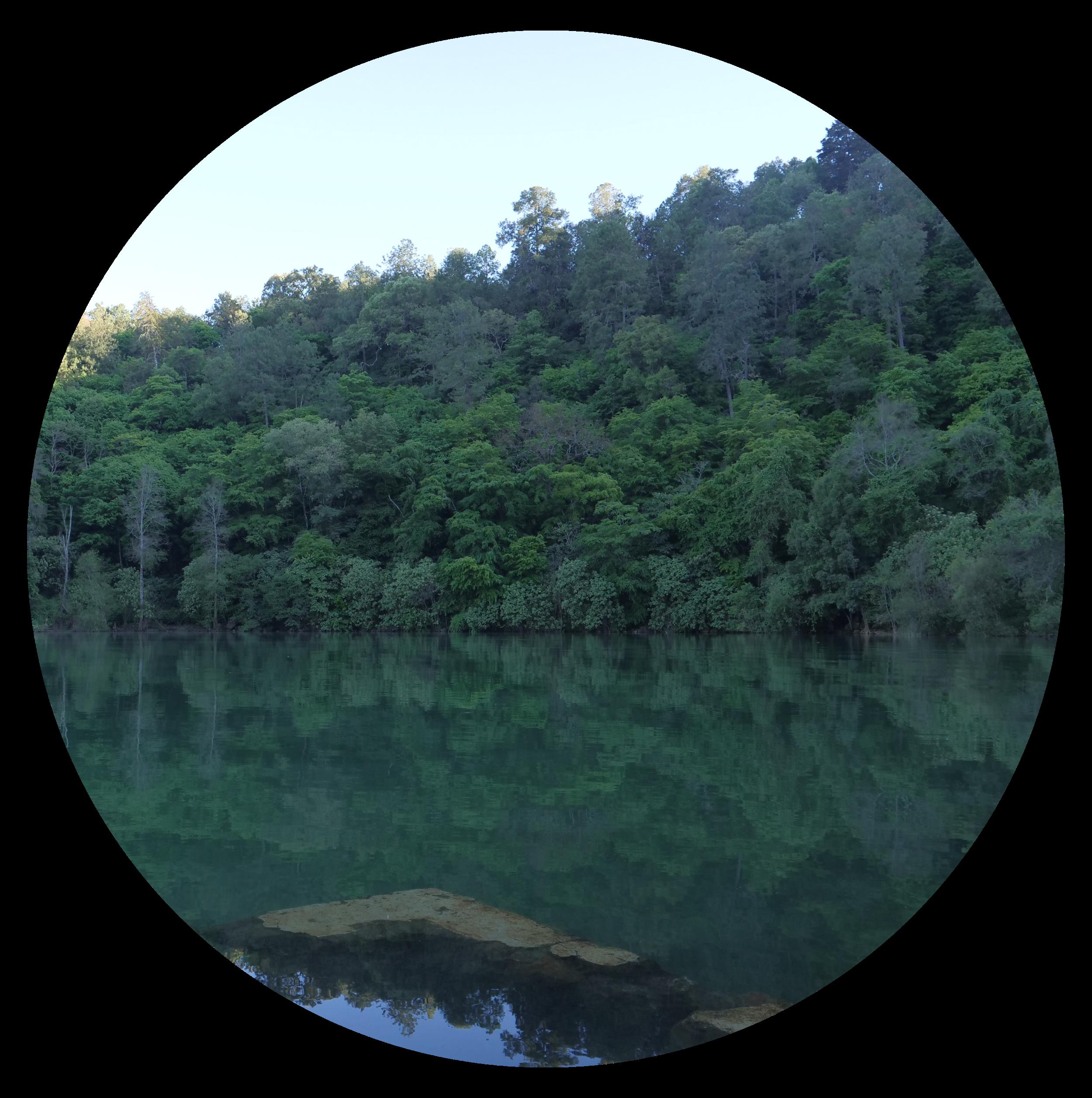 P lago.png