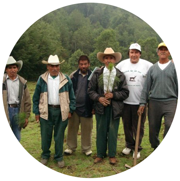 Indigenos.png