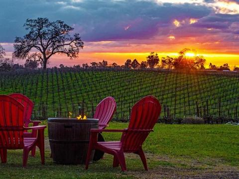Photo from Bokisch Vineyards
