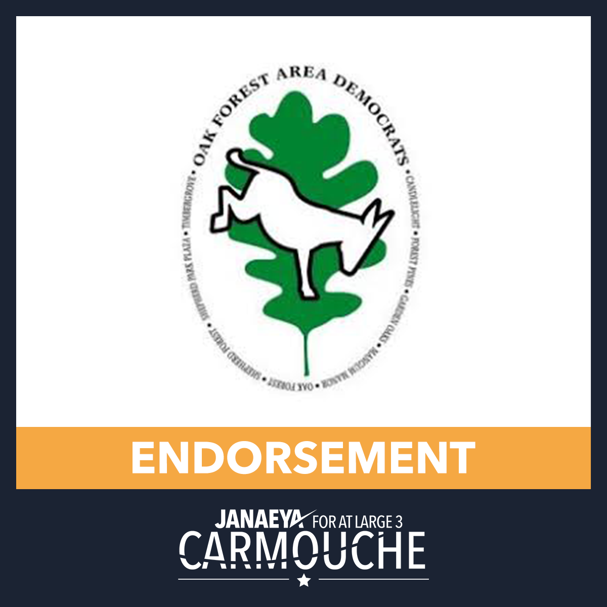 JC Endorsement Seal Oak Forest Dems.png