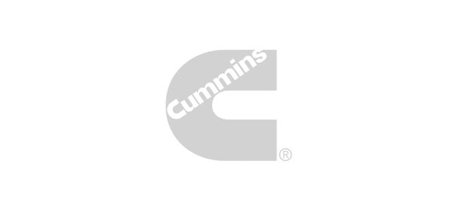 Logos-2x1-Cummins.png