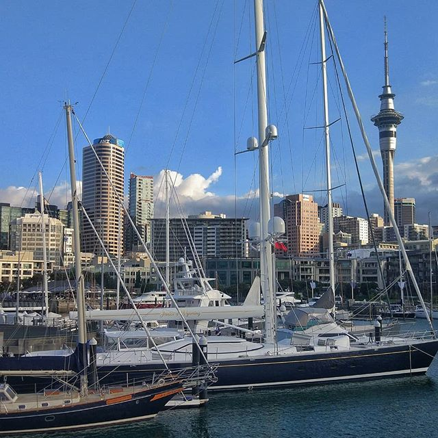 Auckland truly is the City of Sails ⛵⛵⛵ Loving the views from Wynyard Quarter  #newzealand #auckland #viaductharbour #wynyardquarter #aucklandskyline #skytower #skytowerauckland #weheartauckland #ourakl #aucklandcity #visitauckland #weareweekendkiwis #discoveryourbackyardnz #newzealandblogger #travelbloggernz #discover_aotearoa