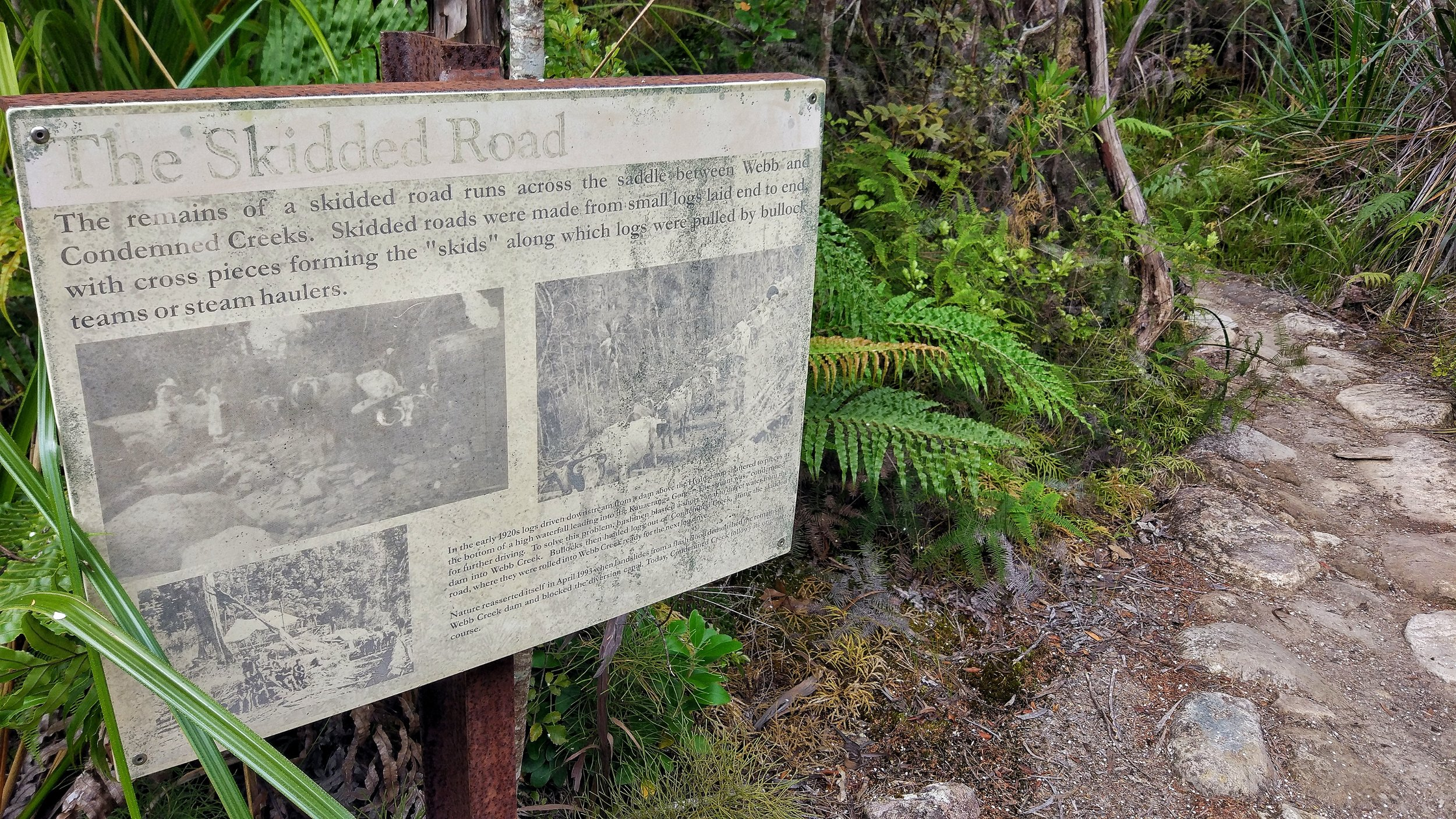 Learn about new zealand history on the pinnacles walk