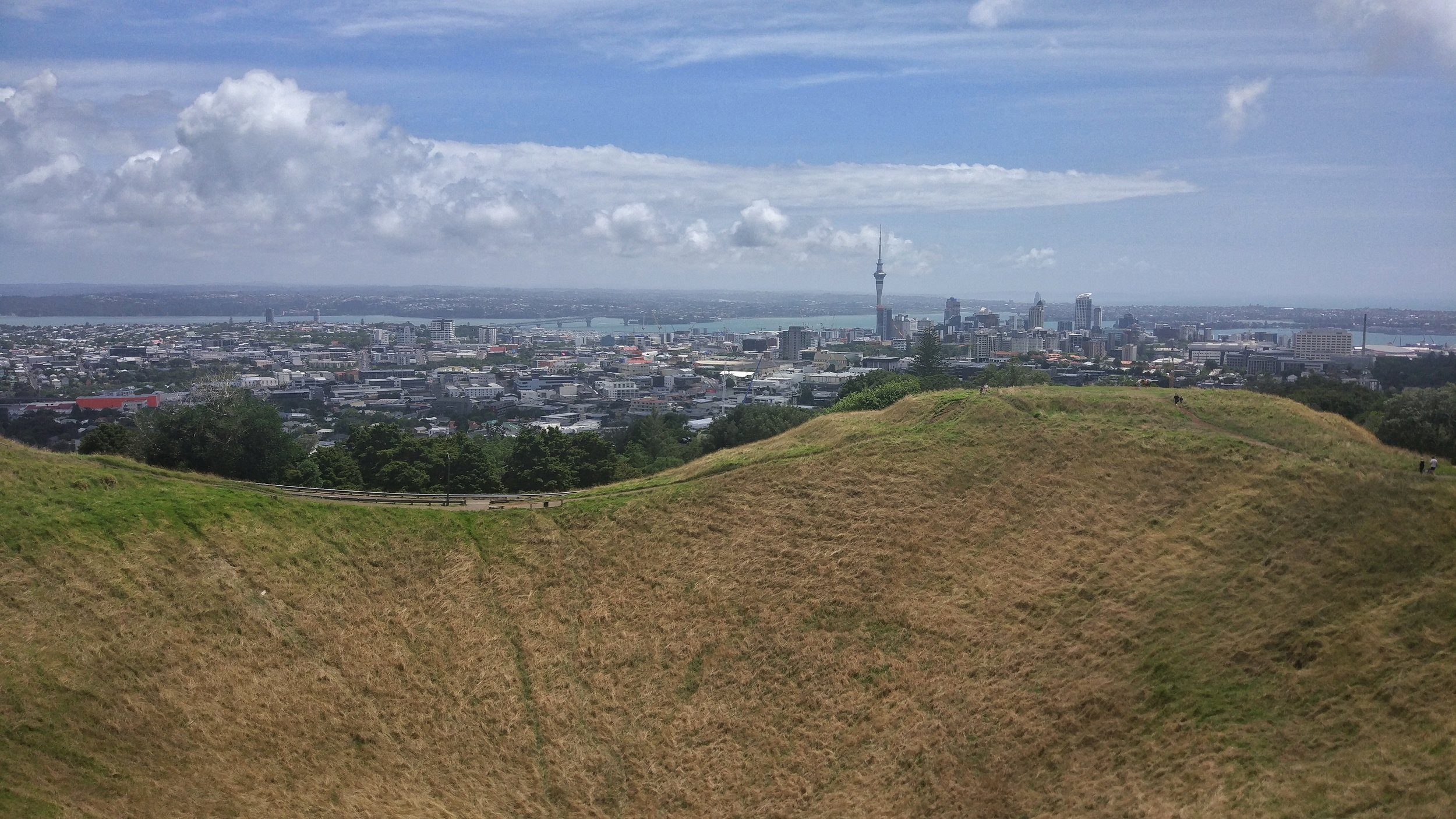 view of auckland city, the sky tower, harbour bridge and the volcano crater from mt eden