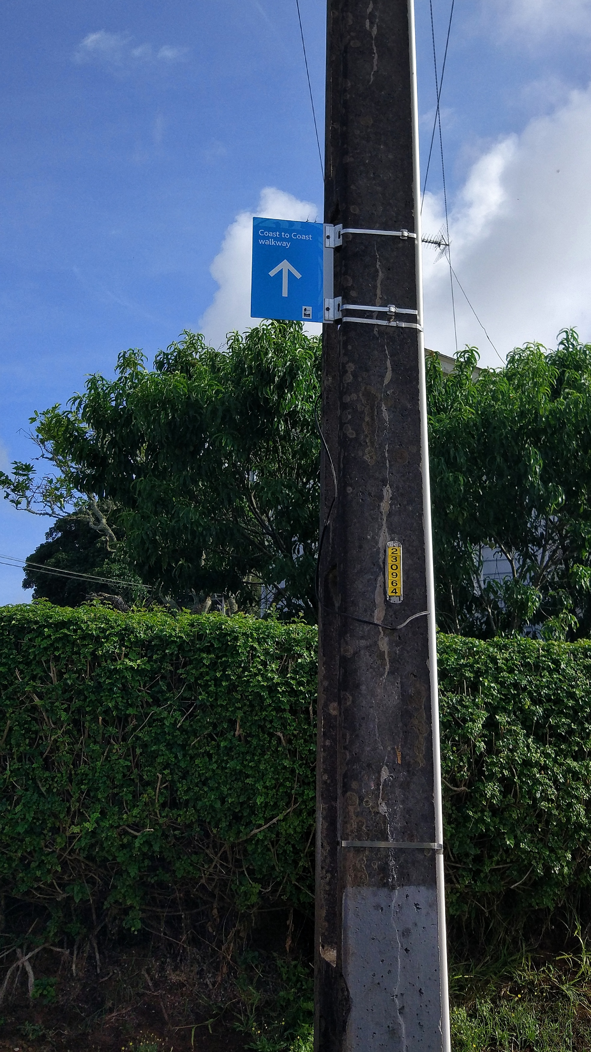 Finding the coast to coast walk signs: blue for onehunga - city and yellow for the other way