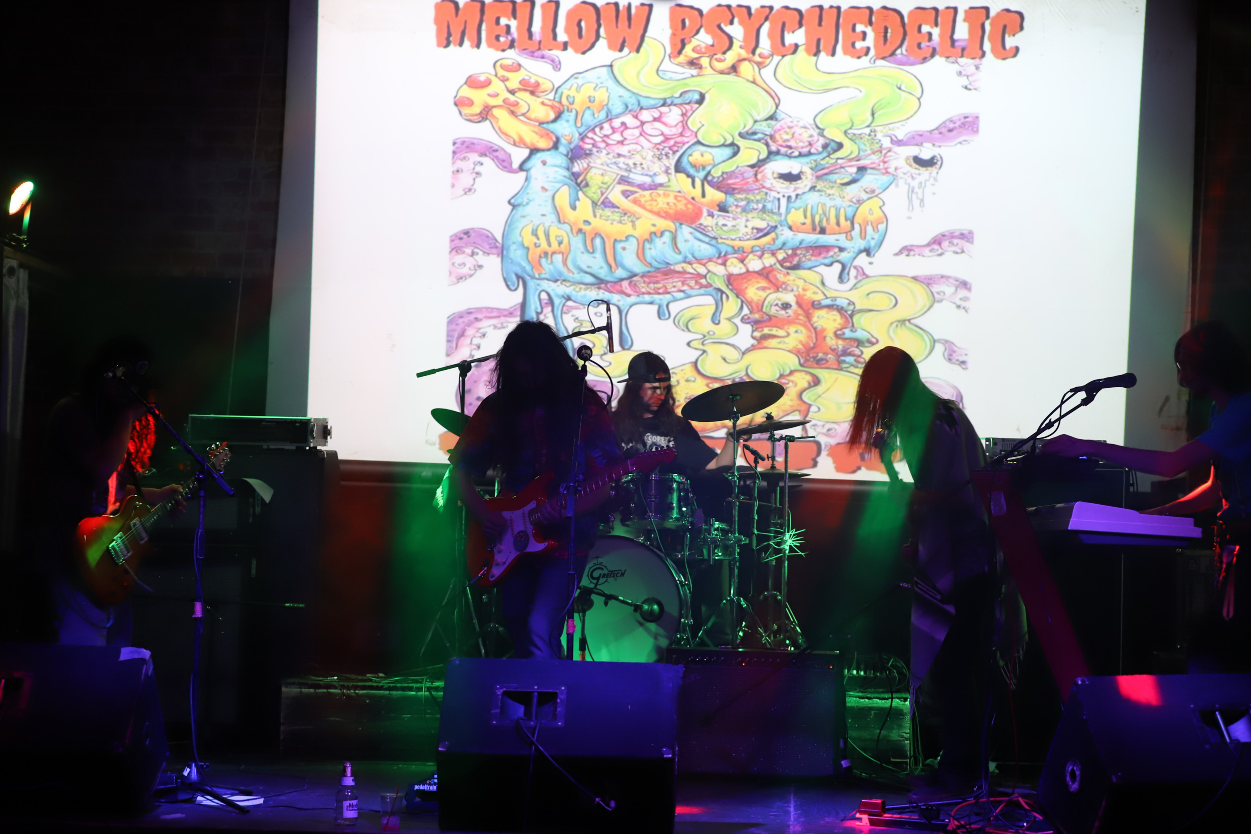 Mellow Psychedelic Culture - 2019-03-30 at The Hut in Tucson, AZ