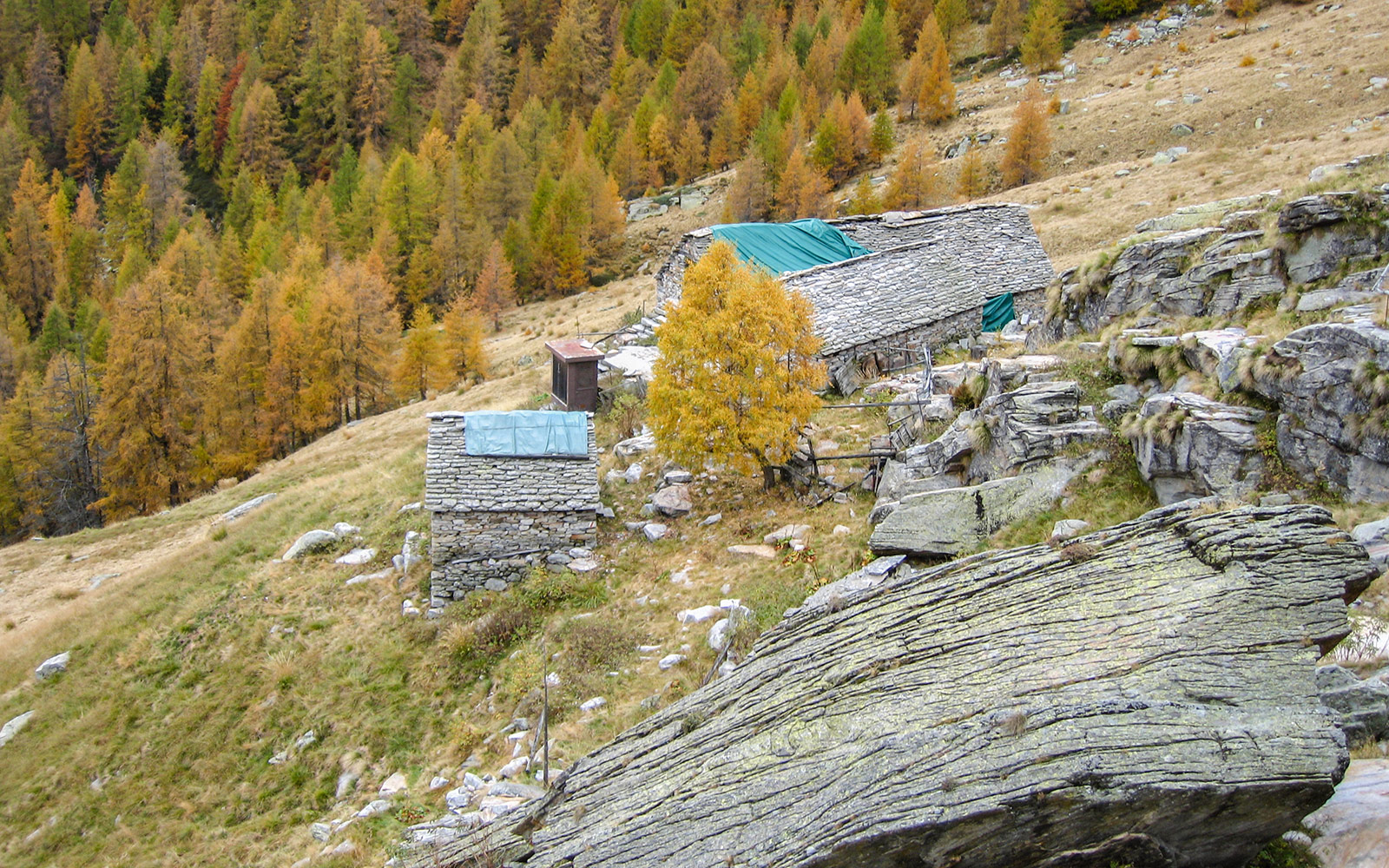 Alpe Sgiov