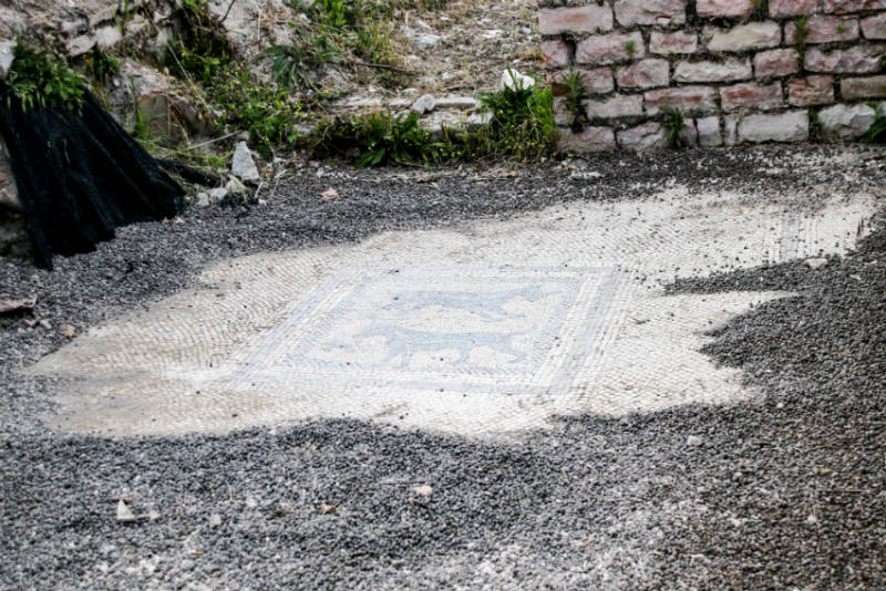 forum sempronii parco archeologico a fossombrone mosaico romani la staffetta del bianchello bianchello del metauro colli pesaresi