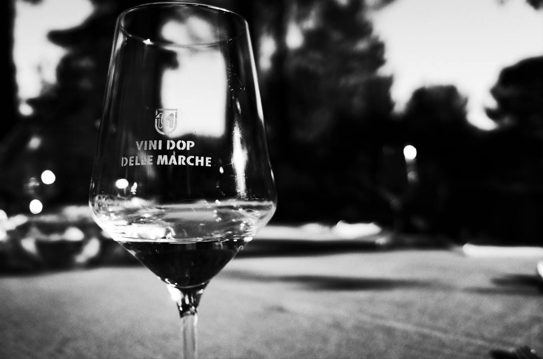 vini Dop della regione marche bianchello del Metauro colli pesaresi pergola marche provincia di pesaro e urbino