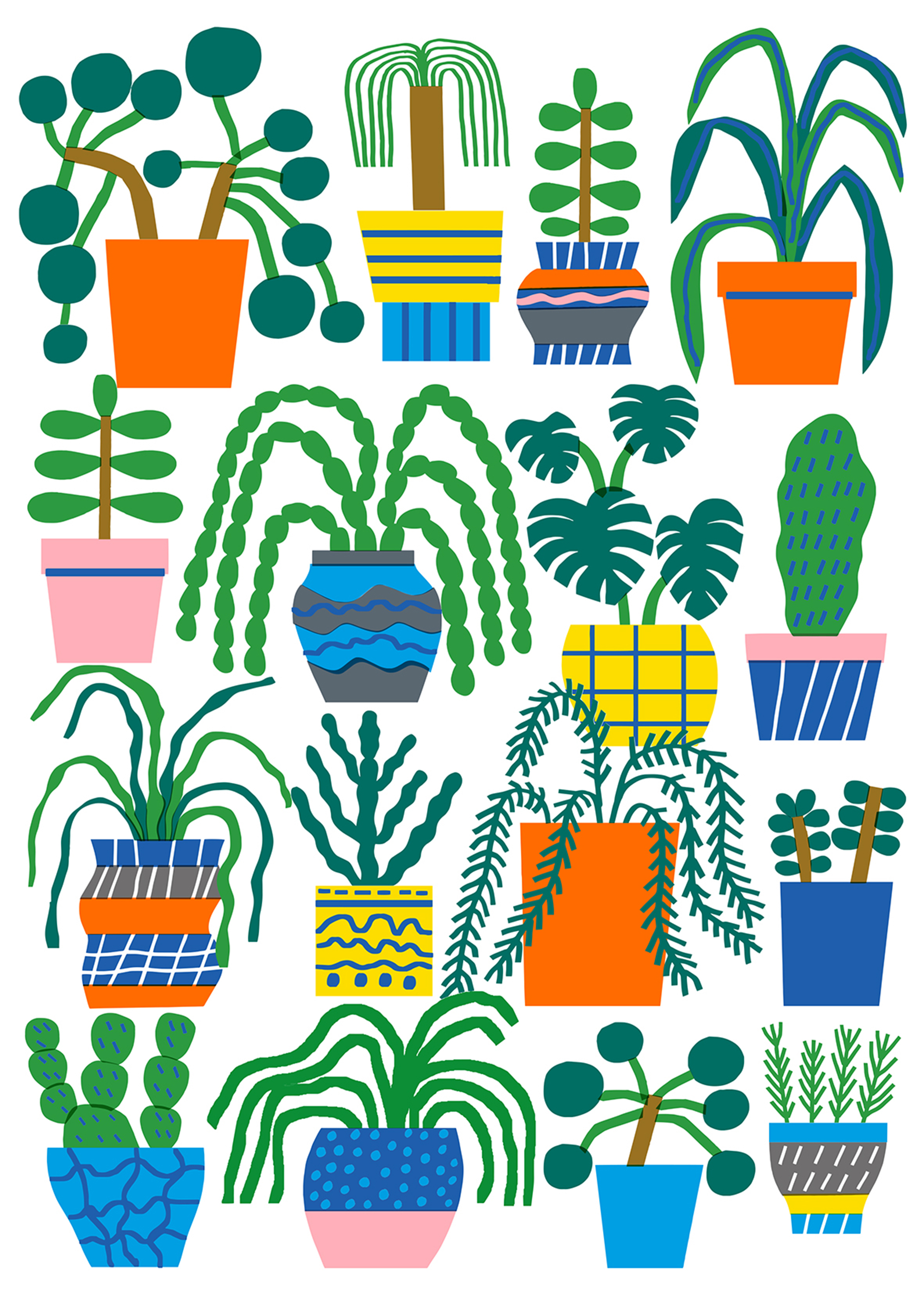 Plant collection.jpg