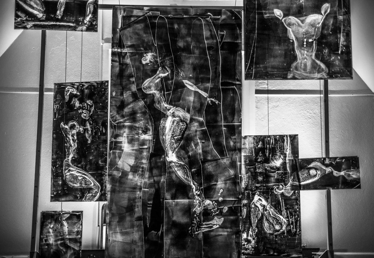 Shift Robin Watkins Davis Art Installation .jpg