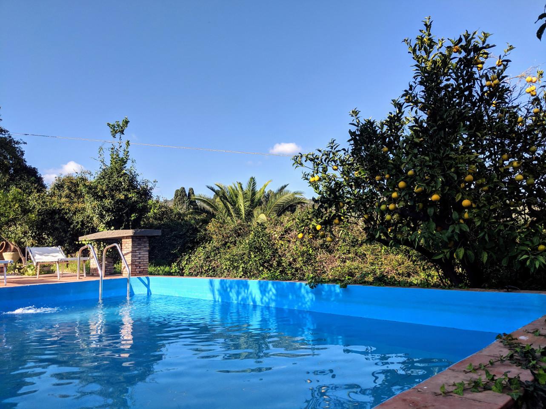85 pool orange villa ama sicily.jpg