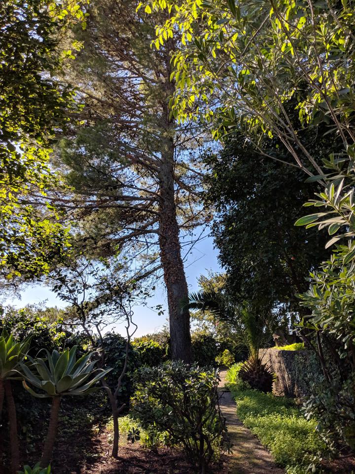 97 side garden villa ama sicily.jpg
