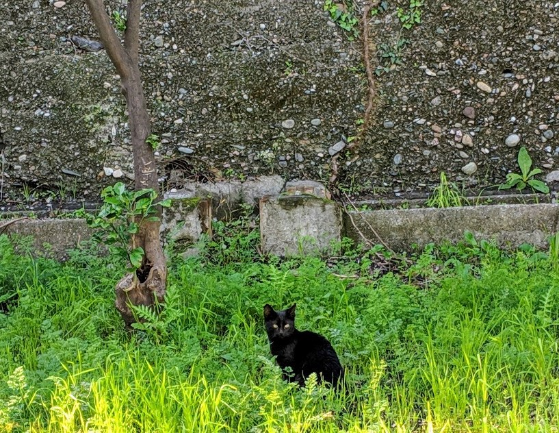 102 nerina grass villa ama sicily.jpg