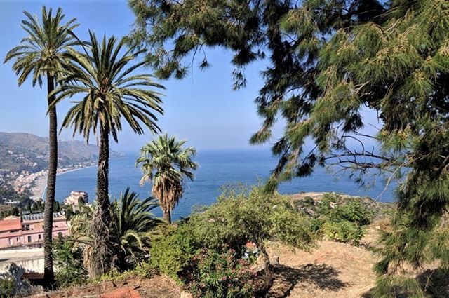 Late summer, Taormina. #taormina #mediterraneanviews #mediterraneanscrub #ioniansea #latesummer #macchiamediterranea #siciliansummer #nelbludipintodiblu