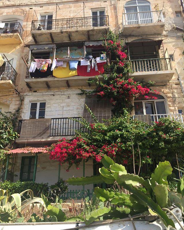 #Malta -Low key locals