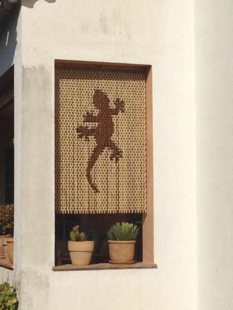 Gecko fenêtre