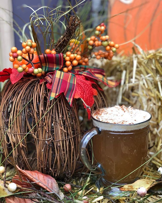 Step aside Pumpkin Spice, this is truly fall in a cup! Try our Chai Spiced Cider with your choice of green or masala chai. #fall #applecider #chai #mushroomcafe #local #kennettsquare #pumpkin #wilmington #chaddsford #apple