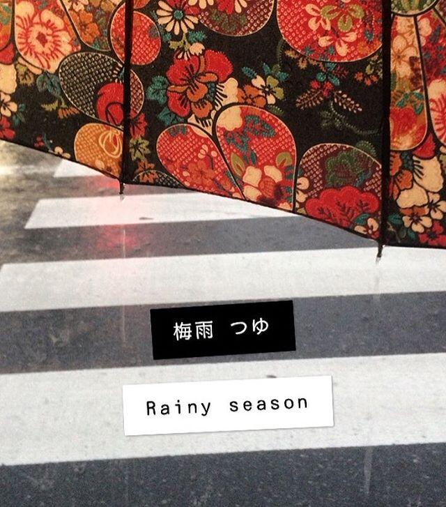 Now is the start of the rainy season in Japan, and the hydrangeas will soon be in full bloom! We don't really have a rainy season in the U.K., but lately it's been raining so much it feels like we do! Stay dry, everybody ☔️ ⠀⠀⠀⠀⠀⠀⠀⠀⠀⠀⠀⠀ ⠀⠀⠀⠀⠀⠀⠀⠀⠀⠀⠀⠀ ⠀⠀⠀⠀⠀⠀⠀⠀⠀⠀ 梅雨入りはもうすぐでしょう。梅雨の時期に紫陽花が咲いてくるから、悪くないと思います。イギリスでrainy season がないのに、最近は雨の日々ですから梅雨にみたいです。皆さん、雨に濡れないようにね〜 ⠀⠀⠀⠀⠀⠀⠀⠀⠀⠀⠀⠀ ⠀⠀⠀⠀⠀⠀⠀⠀⠀⠀⠀⠀ ⠀⠀⠀⠀⠀⠀⠀⠀⠀⠀⠀⠀ ⠀⠀⠀⠀⠀⠀⠀⠀⠀⠀⠀⠀ ⠀⠀⠀⠀⠀⠀⠀⠀⠀⠀ ⠀⠀⠀⠀⠀⠀⠀⠀⠀⠀ #日本 #日本語 #日本文化 #梅雨 #梅雨の時期 #傘 #翻訳 #英訳 #翻訳家 #雨の日々 #花柄 #japan #japanesewords #japaneseculture #japaneseumbrella #rainyseason #japanesetranslation #japanesetranslator #japaneselanguage #rainydays #translation #translator