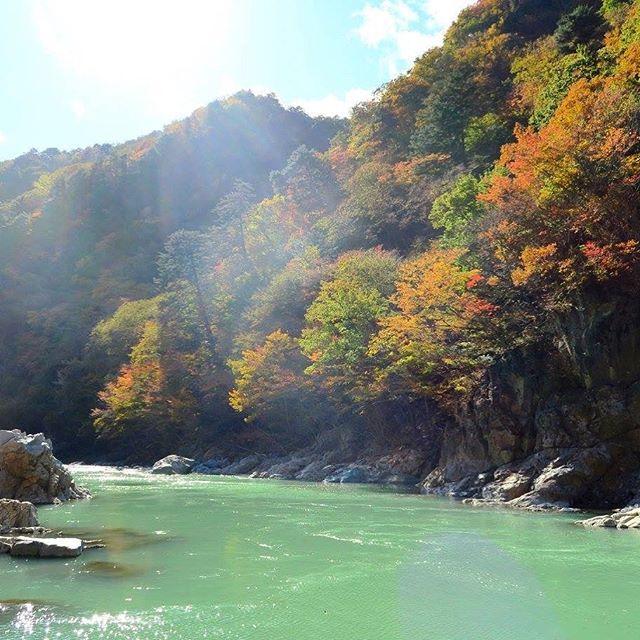 年間を通じて日光はいろいろな美しい風景がありますが、やっぱり秋は一番素敵な季節だと思います。 🍁  Nikko has a lot to offer all year round, but autumn is definitely the best season!  #autumn #hiking #japan #japanhiking #japannature #momiji #nikko #秋 #ハイキング #日本 #紅葉 #自然 #日光