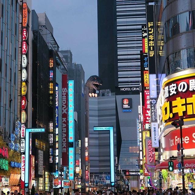 11月3日は「ゴジラ」の誕生日です‼︎ 65年前に最初の映画が公開されて、それ以来世界的に有名な怪獣になりました。🦖 November 3rd is Godzilla's birthday! The first movie was released 65 years ago, and since then he's become famous around the world! ・ ・ ・ ・ ・ #ゴジラ #怪獣 #新宿 #歌舞伎町 #東京 #観光 #翻訳 #翻訳家 #英訳 #フリーランス翻訳家 #godzilla #kaiju #shinjuku #kabukicho #japan #japantourism #translation #japanesetranslator