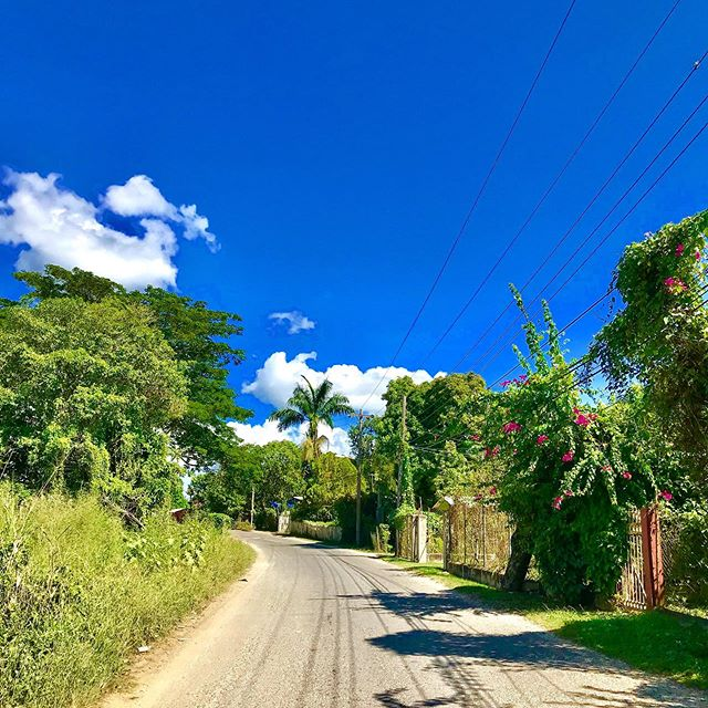 Blue skies in Jamaica! Who's ready for some summer fun? Maybe a Jamaican road trip or even some rest and relaxation at Coral Cottage! 🤙🇯🇲😎 . #CoralCottageJamaica 🌴🌊☀️ . . . . . . . . . .  #Jamaica #Travel #Vacation #VacationHome #Tourism #Explore #WanderLust #TravelBug #TravelTips #TravelJamaica #Paradise #Luxury #Passport #Getaway #PhotoOfTheDay #TravelDeeper #RoundTheWorld #BestInTravel #Tropical #Caribbean #OneLove #Jamaican #GoodVibes #SpringBreak #Retreat #FunInTheSun #Negril