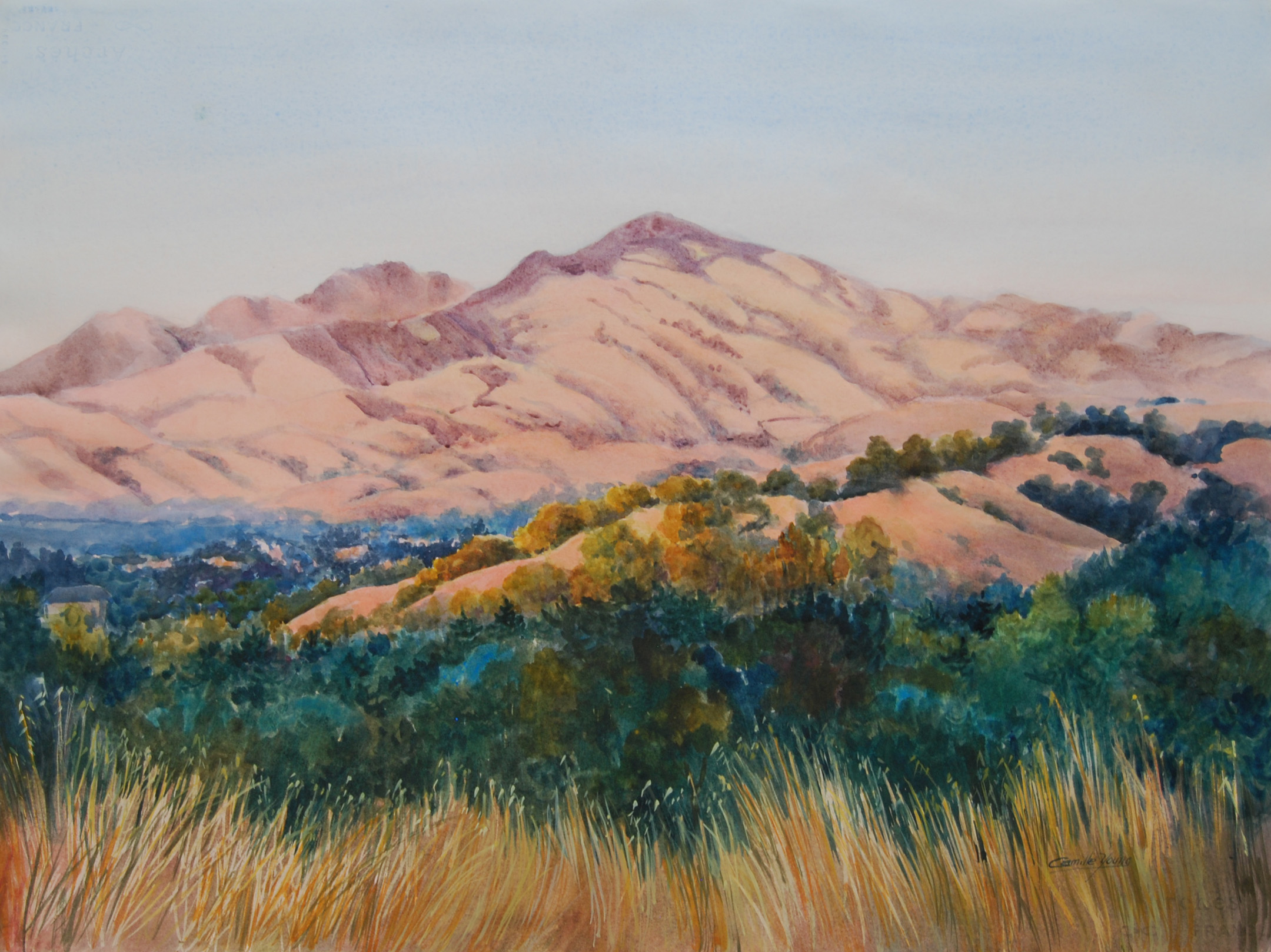 Mount Diablo View   More Info →