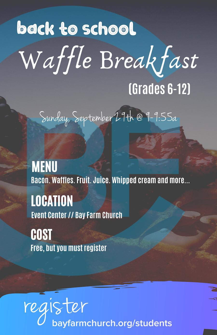 Copy of waffle slide.png