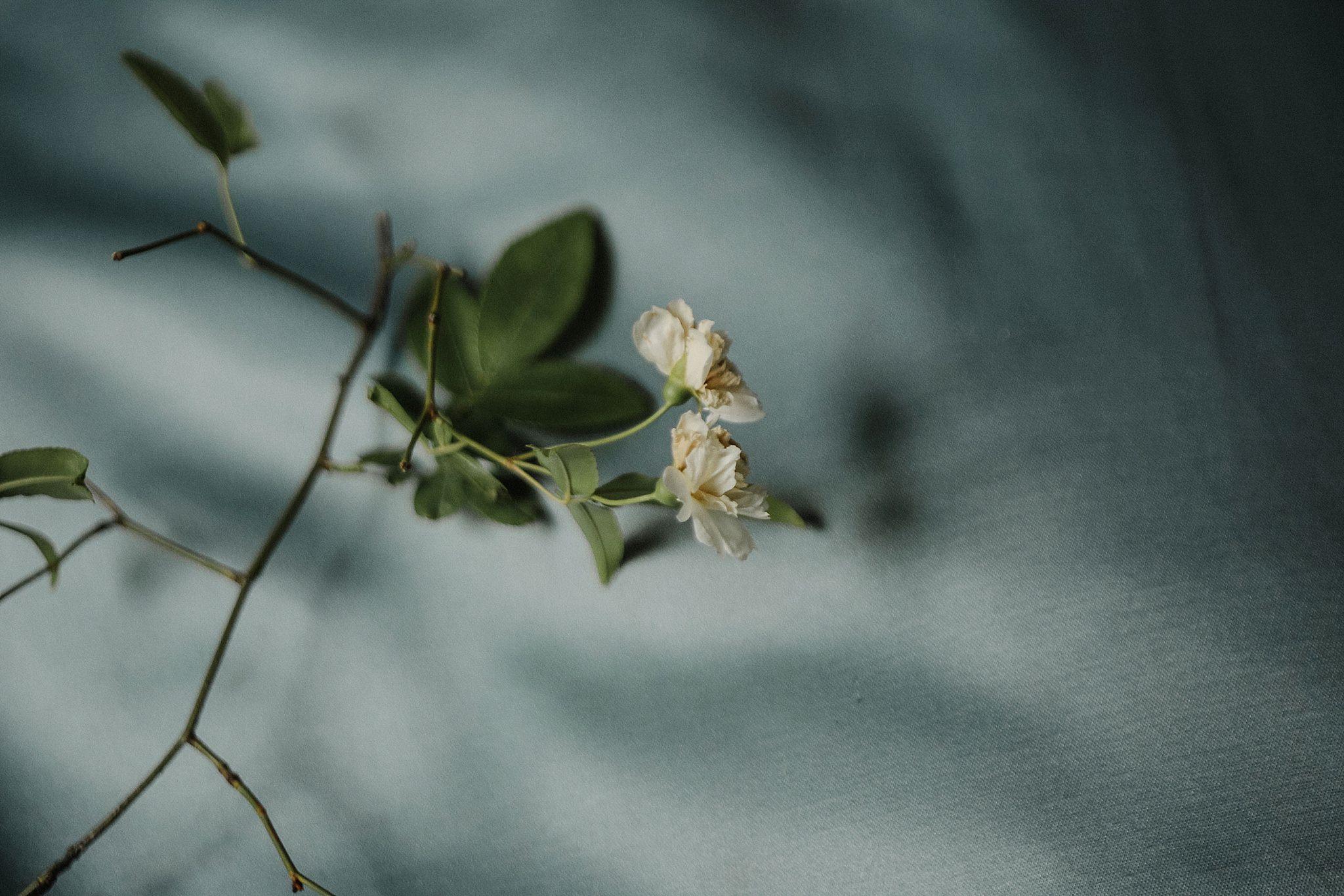 Tuscany_Wedding_Photography-35.jpg