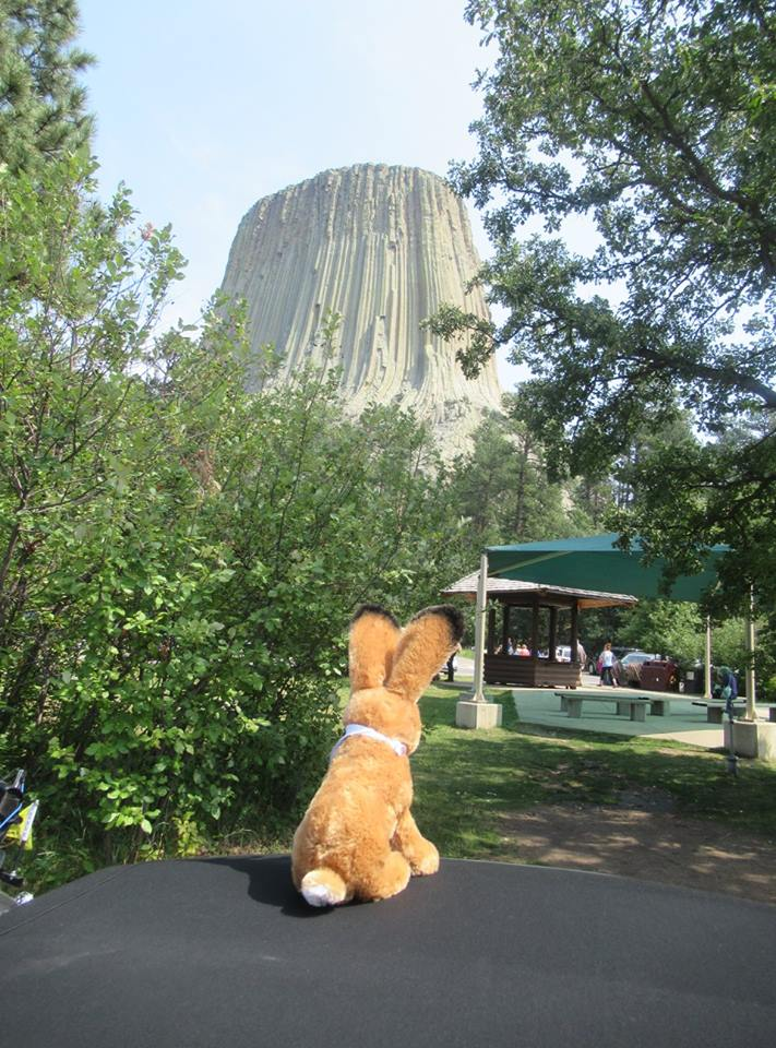 Jack checking out Devil's Tower