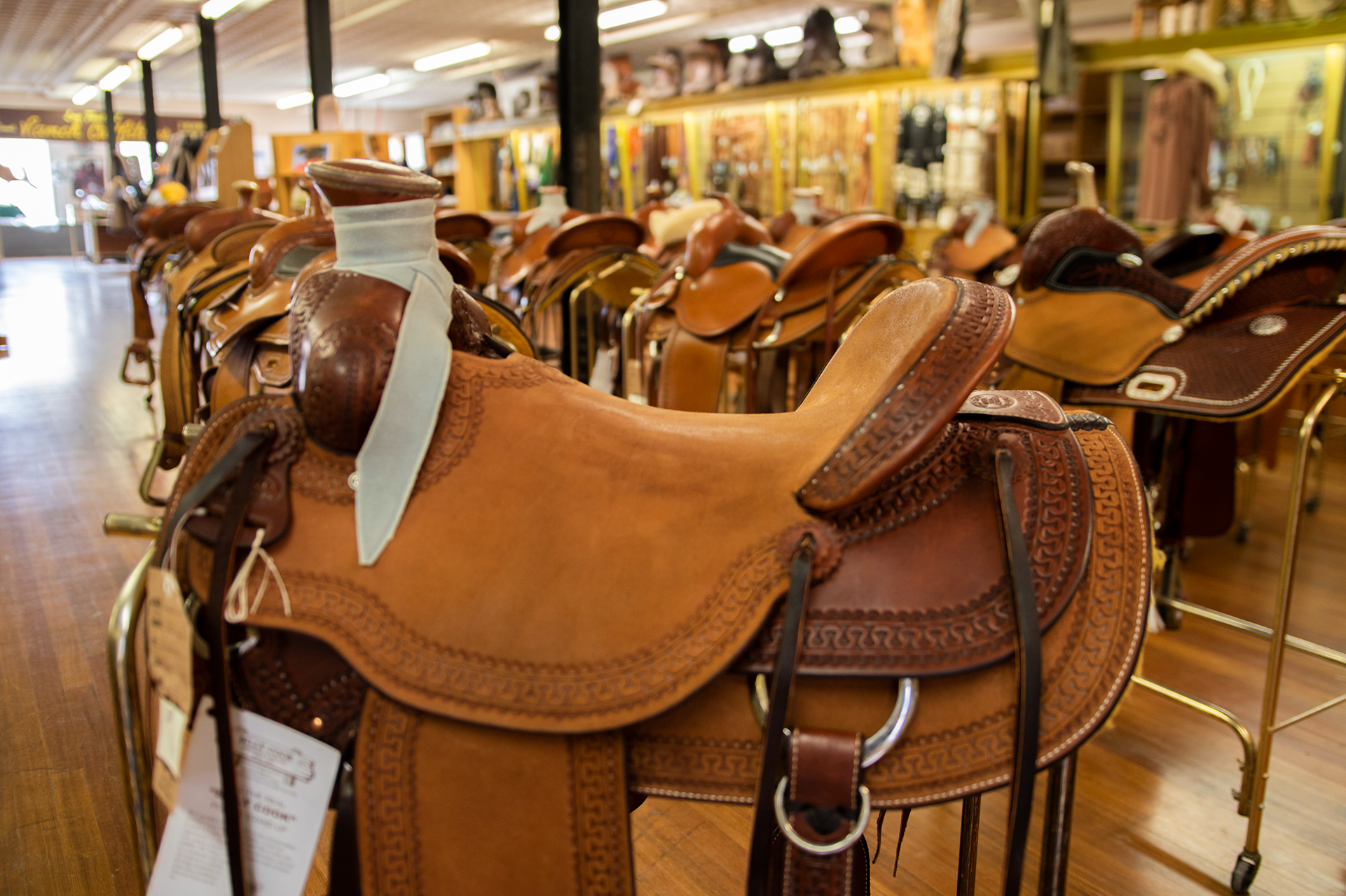"""Saddle & Tack"" - Come browse our fine selection of Billy Cook saddles, along with other supplies like ropes, chaps, bridles, and bronc riding gear."