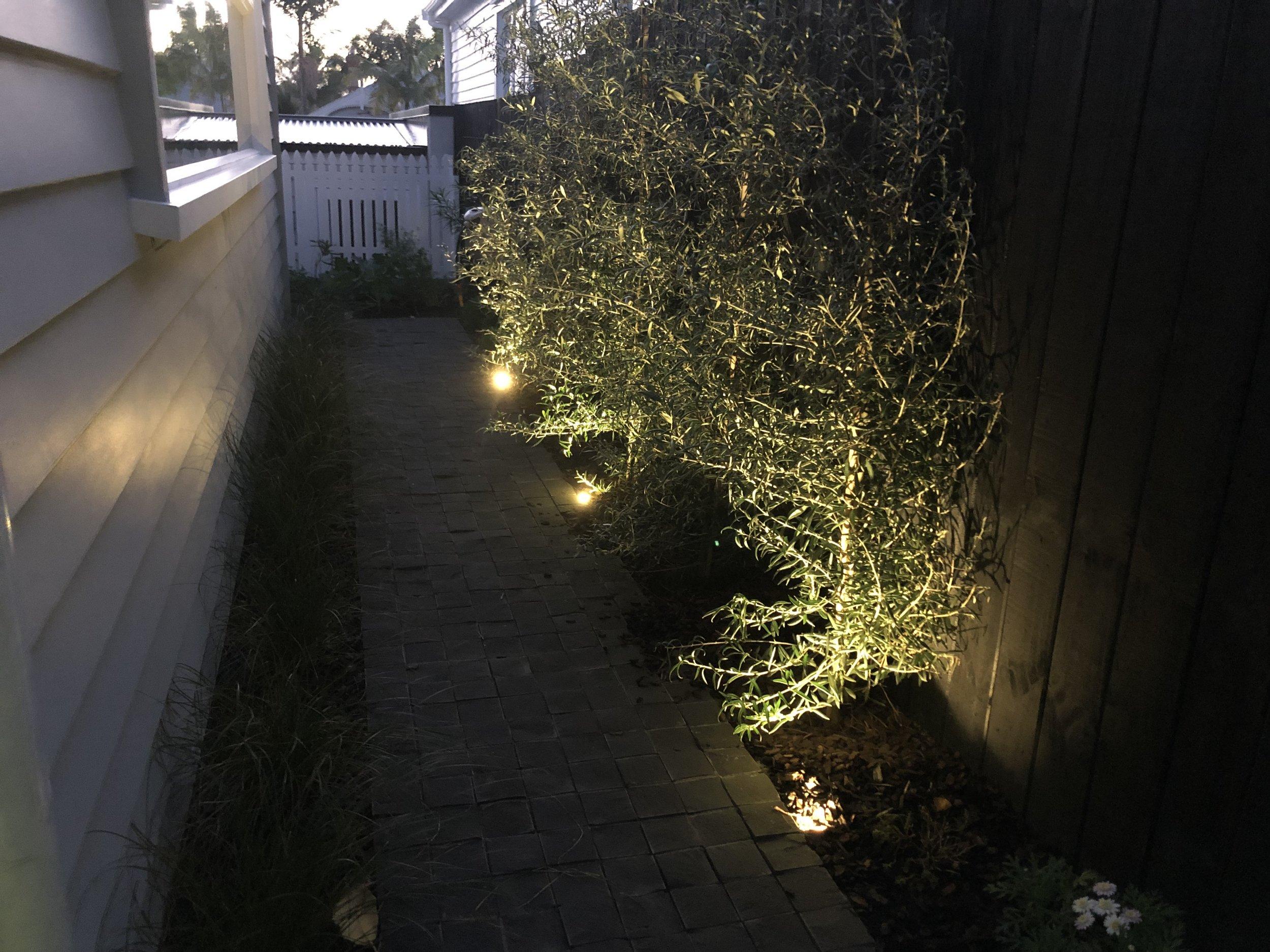 Garden Lighting.jpeg