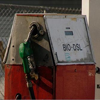 HEMP OIL IS A RENEWABLE BIOFUEL -