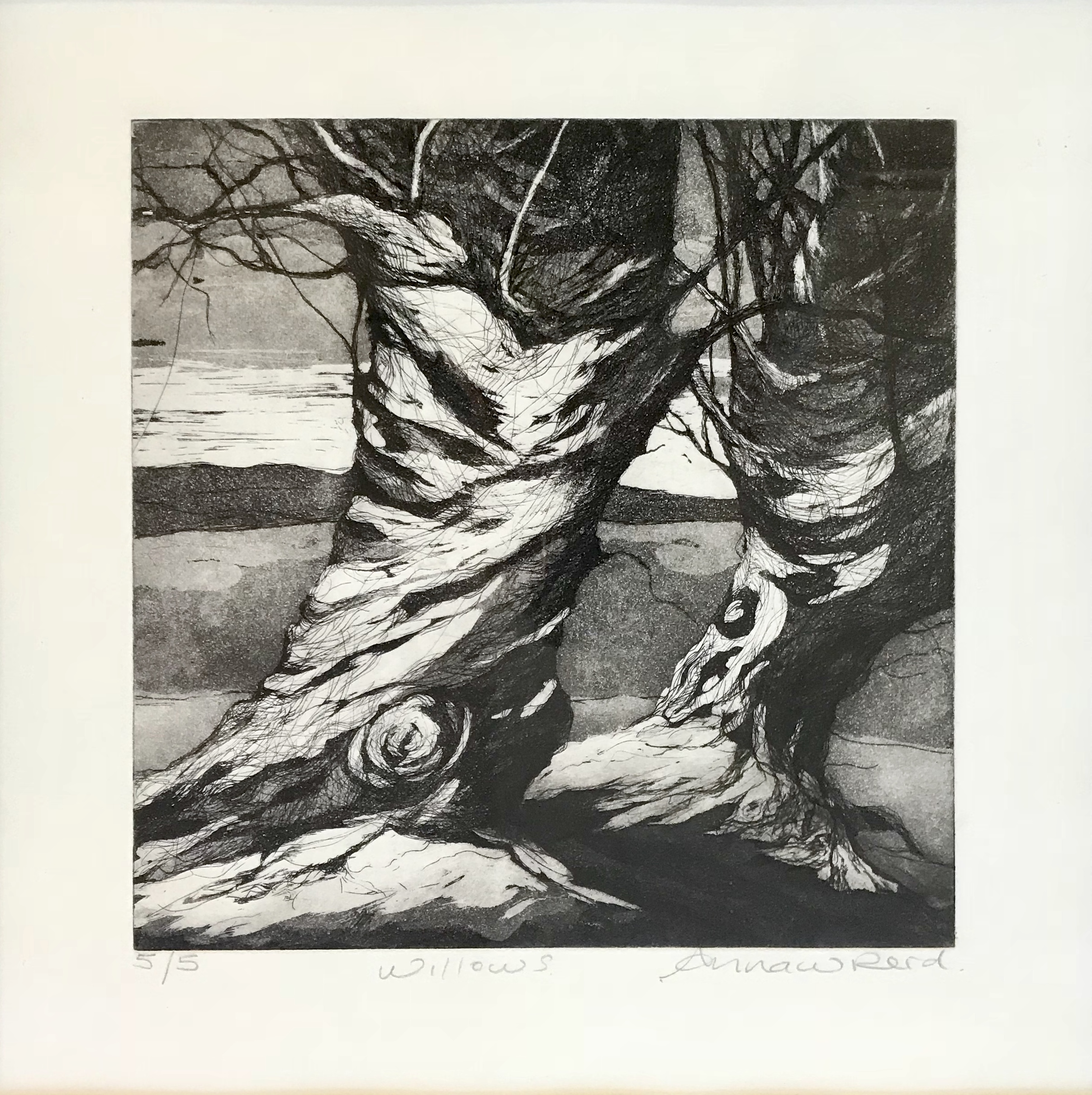 Willows_Etching.jpg
