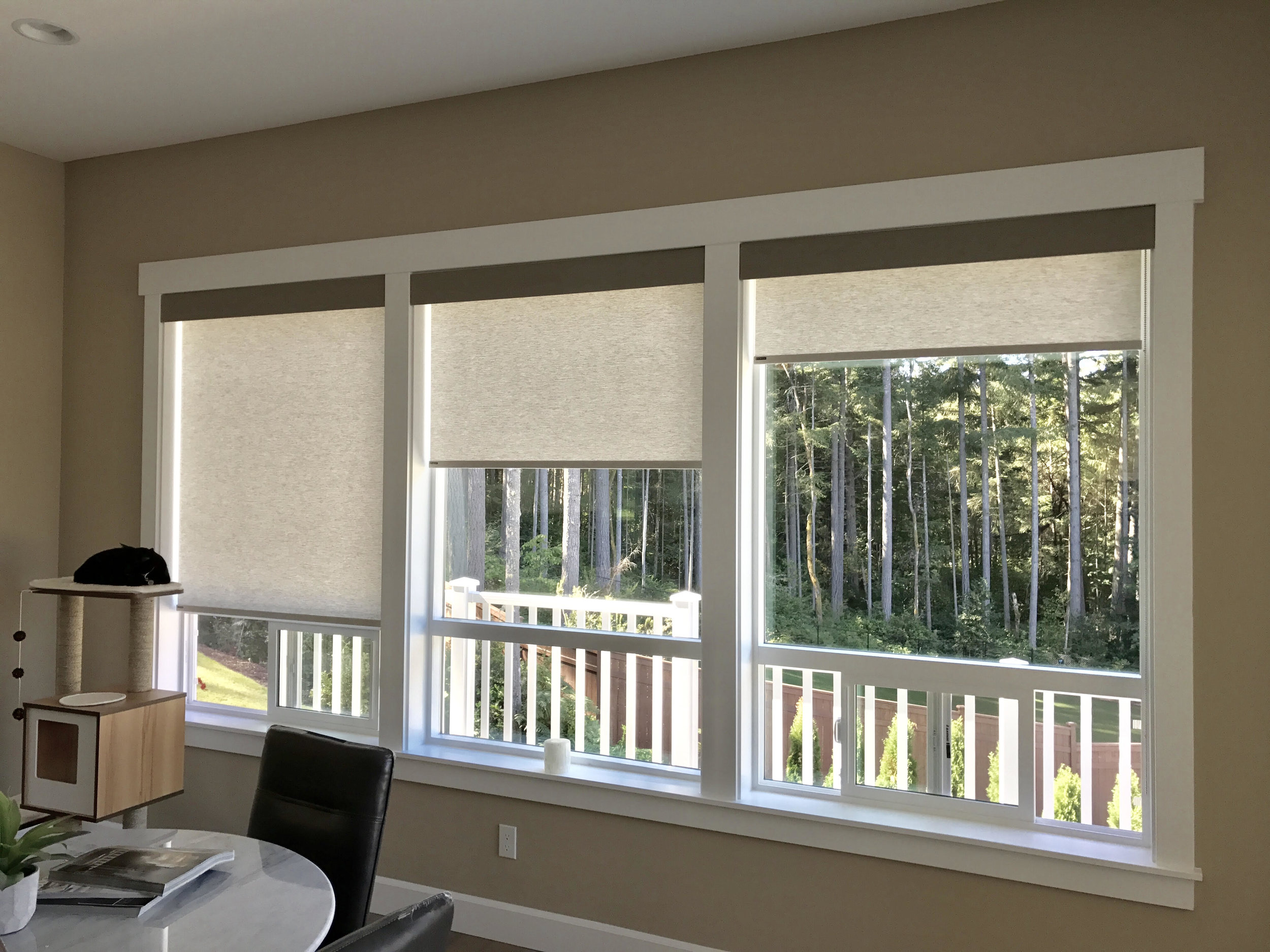 Norman Privacy Roller Shades