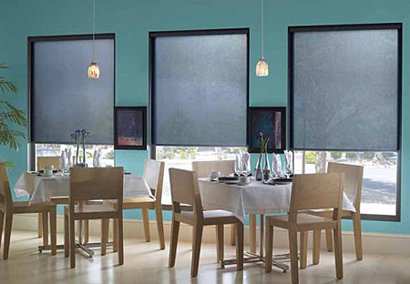 QMotion Motorized Roller Shades