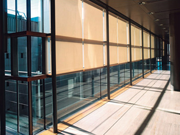 Commercial Grade Roller Shades in an Office Space