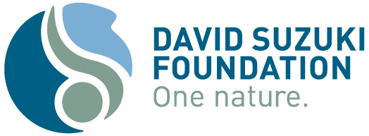 David Suzuki Foundation