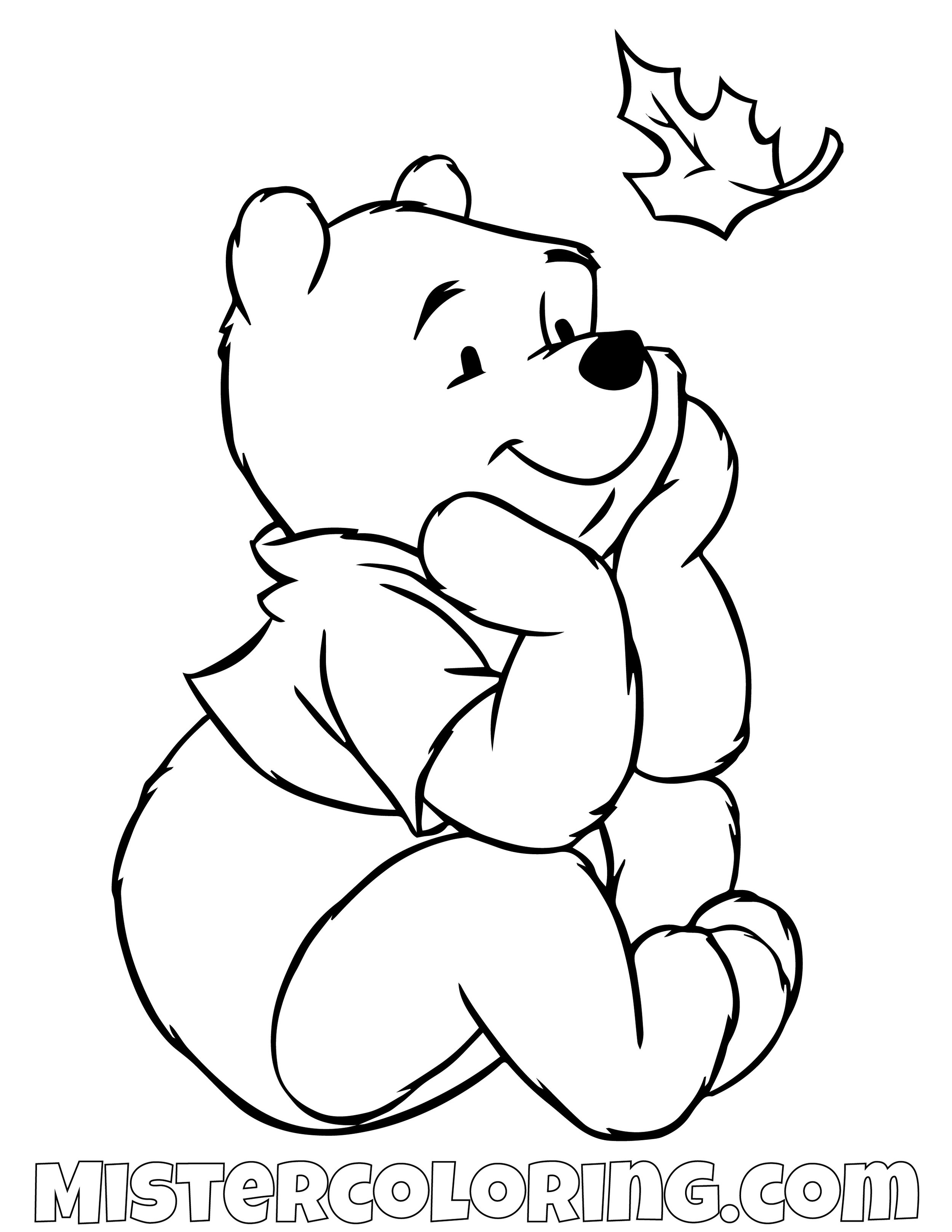 Winnie The Pooh Looking At A Leaf Coloring Page