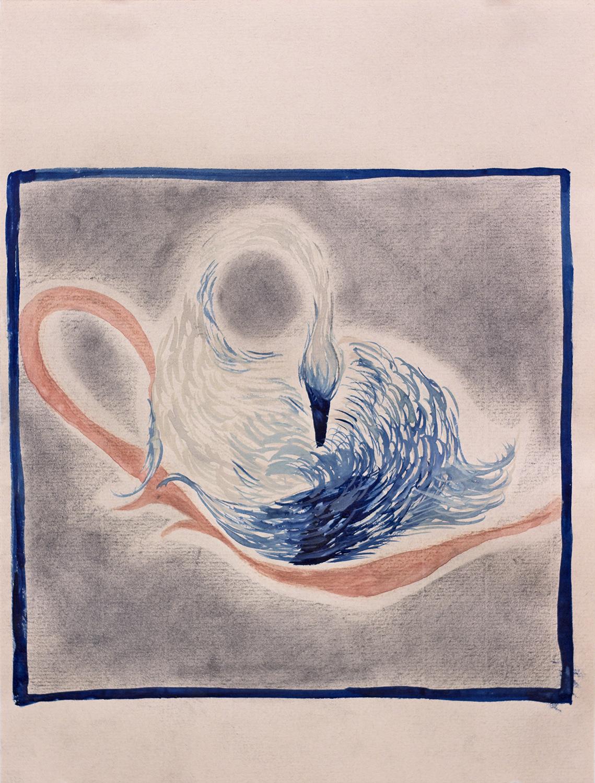 mute swan portrait, 2019