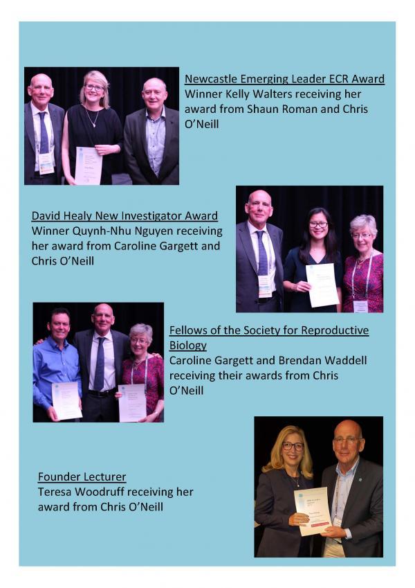 ResizedImageWzYwMCw4NDld-SRB-Award-winners-2017-Page-1.jpg
