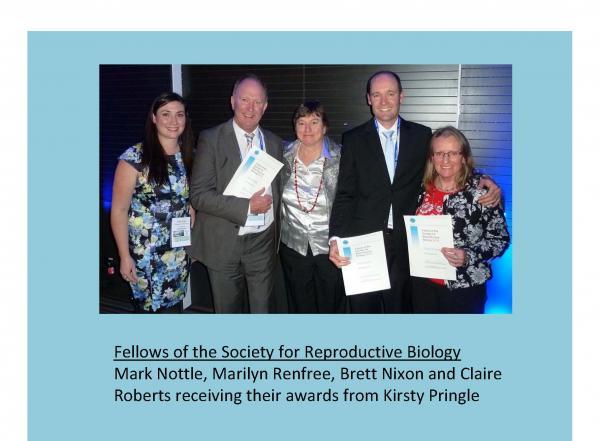 ResizedImageWzYwMCw0NDFd-SRB-Award-winners-2015-Page-4.jpg
