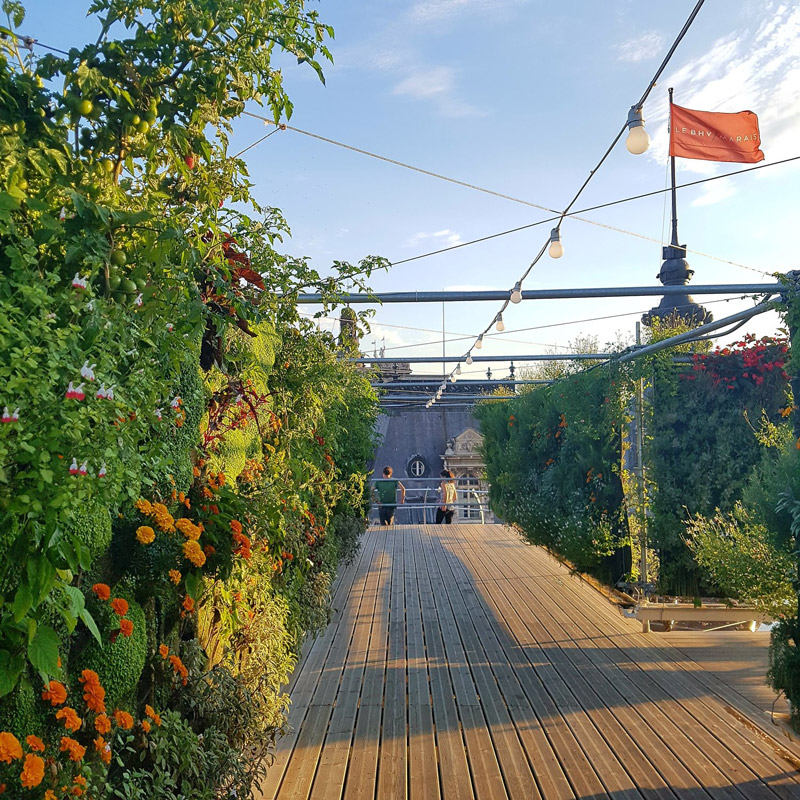 BHV+MARAIS+-+Jardin+Perché+-+juillet+2018.jpg