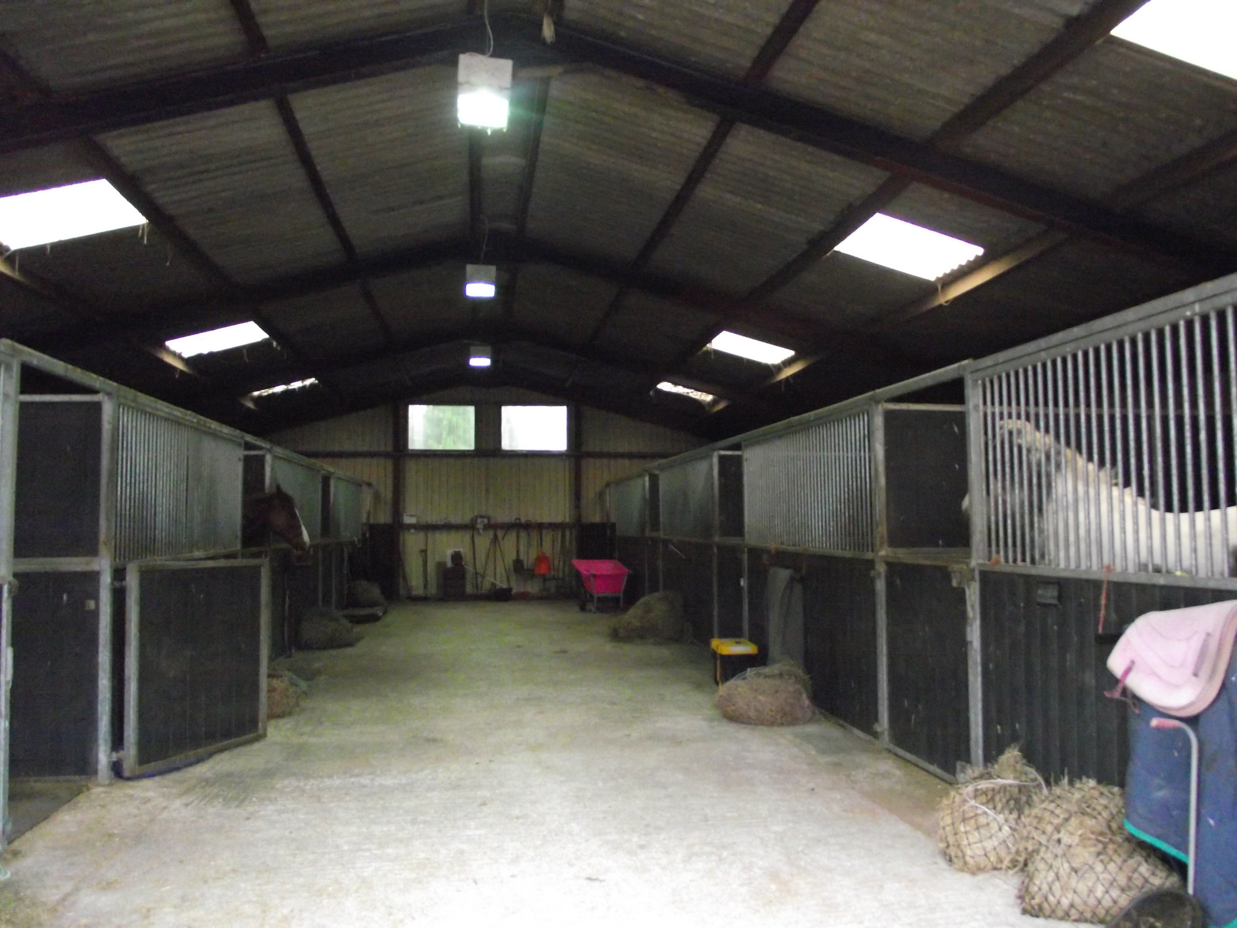 Holiday and Emergency Livery - Huge, airy stables, rubber matting, 24 hour supervision, turnout, CCTV security. Give your horse a holiday while you enjoy your own. New Barn is perfect for horses needing emergency stabling, or recovering from injury.